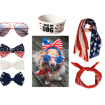Patriotic Parade Attire For Your Pooch